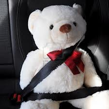 teddy bear wearing a seat belt